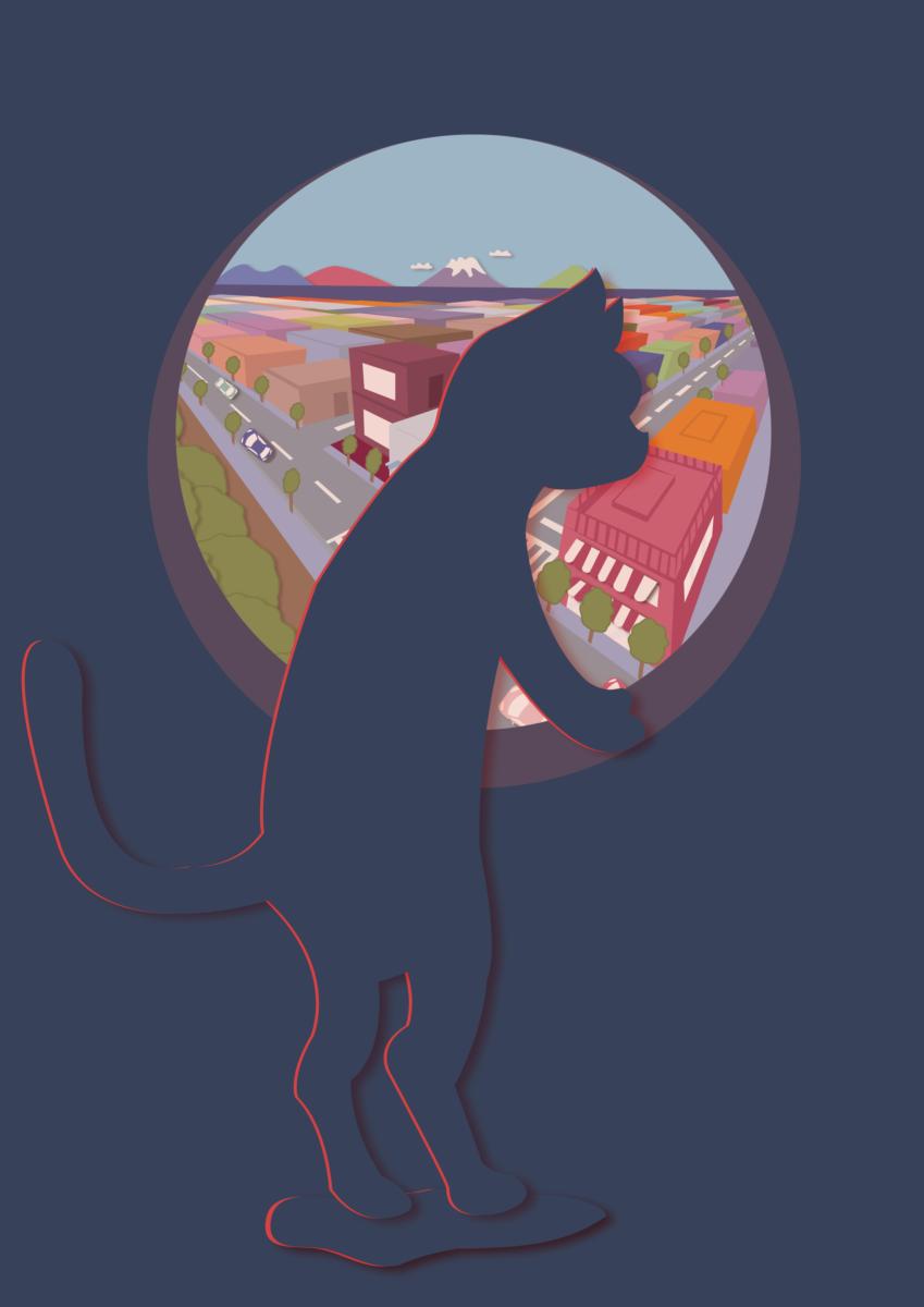 外界を眺める猫